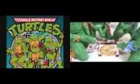 teenage mutant ninja turtles in a half shell