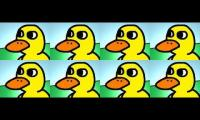 The Duck Song Eight Times