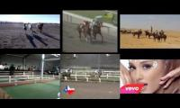 Thumbnail of Horse racing, be free and race!