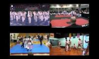 Aspects of Taekwondo