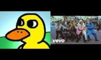 Uptown funk and The duck song