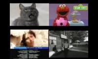 Annoying Goose: Gray Cat Meets Elmo