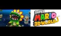 Mario Galaxy with 3D World OST