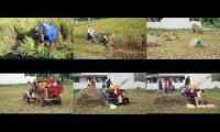 Thumbnail of Rice harvest Malolos, Philippines 03/2020 Covid19 Quarantine