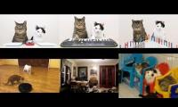 Thumbnail of Cats and The YouTube Multipiler