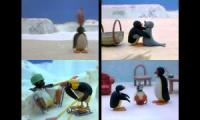 Pingu Episodes at Once Quadparison 3
